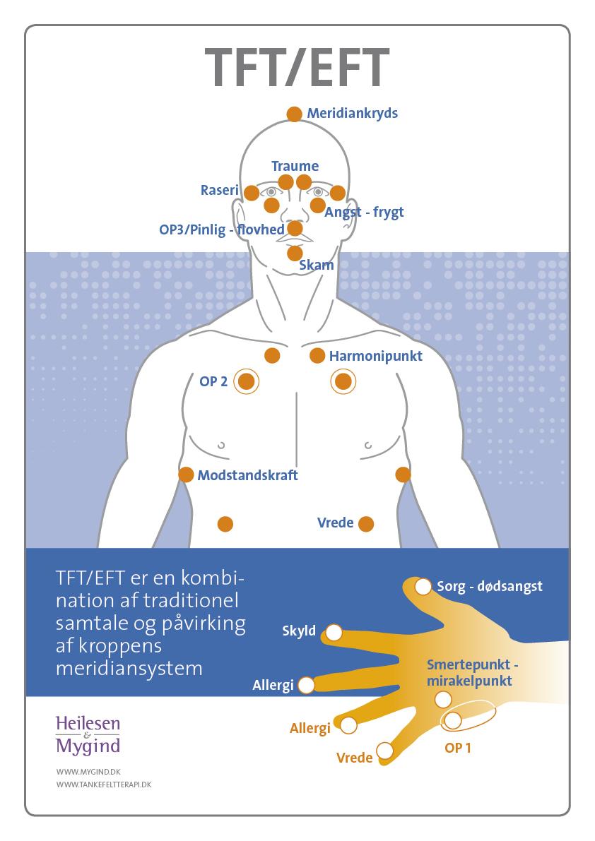 TFT poster elevmnateriale 2016 V3